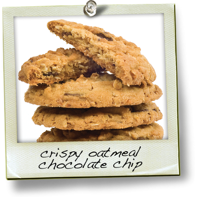 Crispy Oatmeal Chocolate Chip